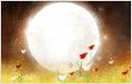 [카가미] 상대의 마음속에 숨겨진 10가지 마음 고백